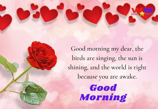 Heart Touching Good Morning Wishes, Messages Quotes, Images For Friends