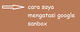 Begini cara saya mengatasi possibly penalized or sandboxed by google