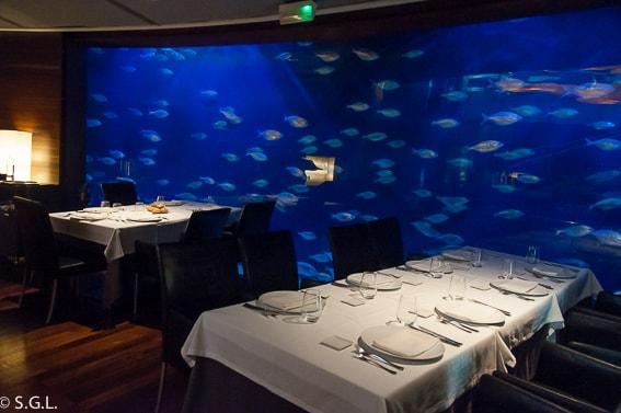 Un dia entero en el Oceanografic. El restaurante submarino.