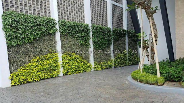 taman vertikal pasuruan, tukang taman vertical garden pasuruan, tukang taman vertikal pasuruan, jasa vertical garden pasuruan, vertical garden pasuruan