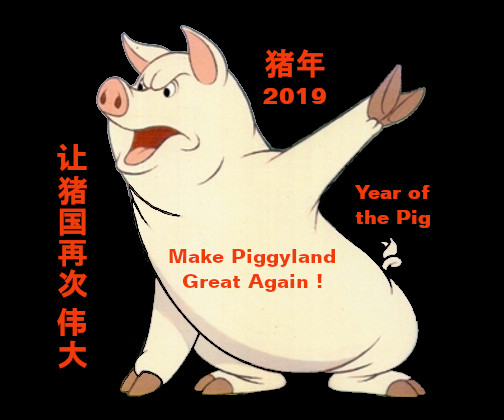 Year of the Pig 2019 猪年