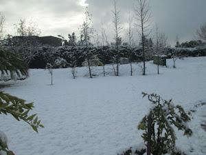 snowing in Southern Hemisphere