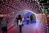 Karnival Pesta Lampu LED Kini Sampai Di Temerloh
