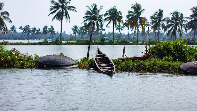 Kerala a Tour of 4 Night and 5 Days Munnar, Thekkady and Alleppey