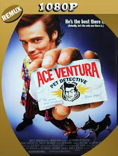 Ace Ventura (1994) BDREMUX [1080p] Latino [Google Drive] Panchirulo