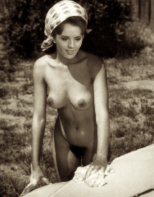 wells naked island Dawn gilligan