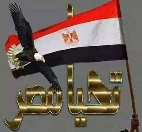 مصر بين الماضي والحاضر