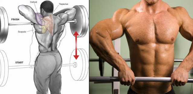 Build Wide And Strong Shoulders With The Barbell Upright Row Without Injury