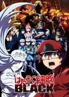 Hataraku Saibou Black (TV) (2021)