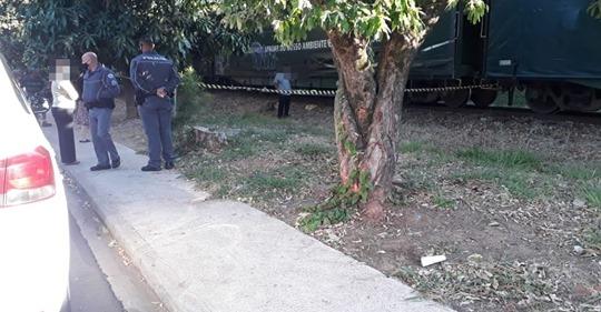 Um homem morreu depois de ser atropelado por um trem, na manhã deste sábado (1), em Guararapes.