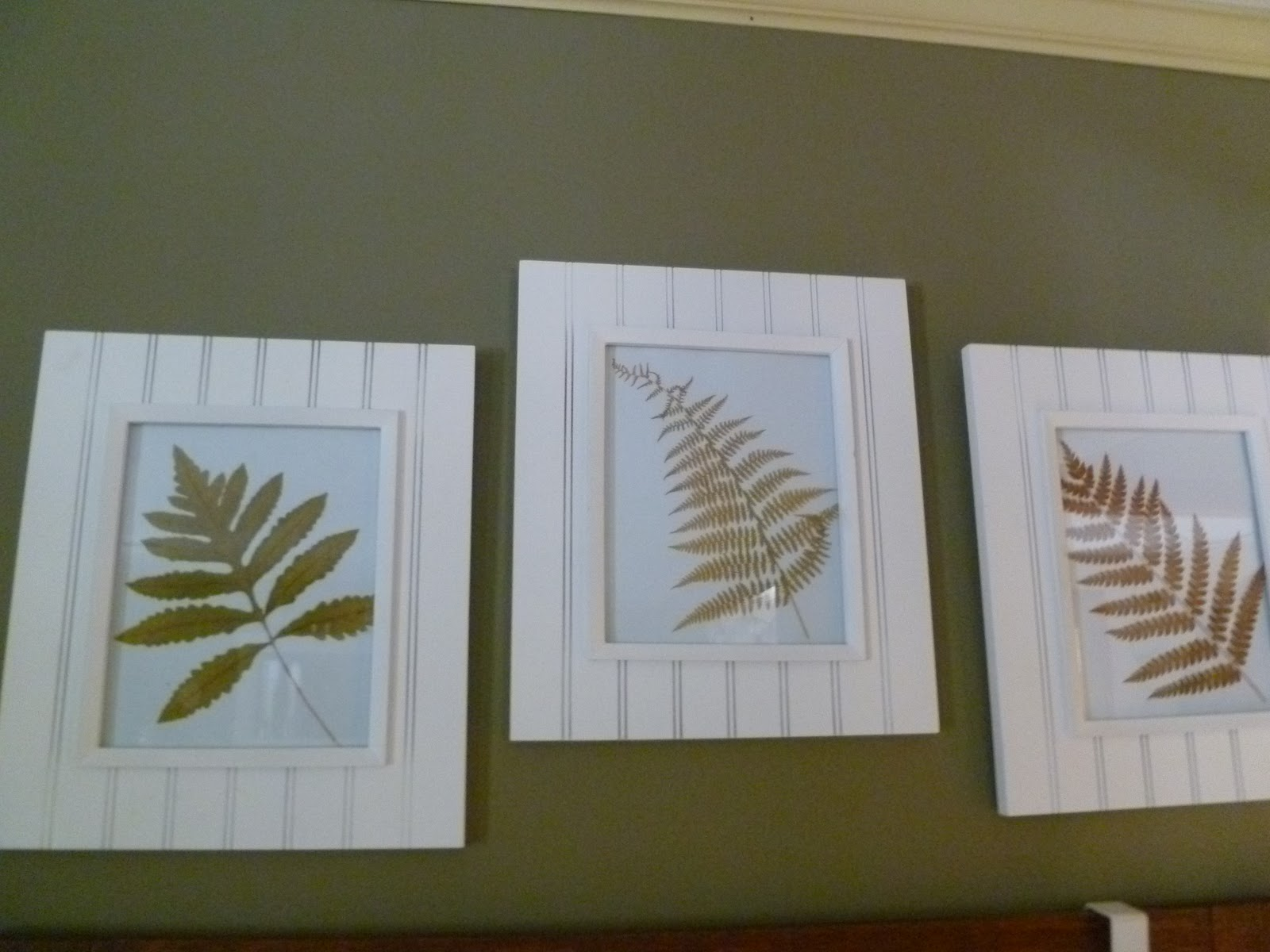 born imaginative.: Pressed Fern Wall Art