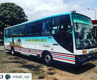 Bus Safari Dharma Raya