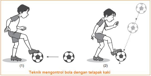 Gambar illustrasi Teknik mengontrol bola dengan telapak kaki