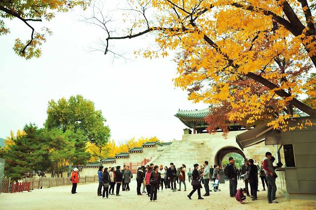 Kinh nghiệm du lịch Hàn Quốc 2