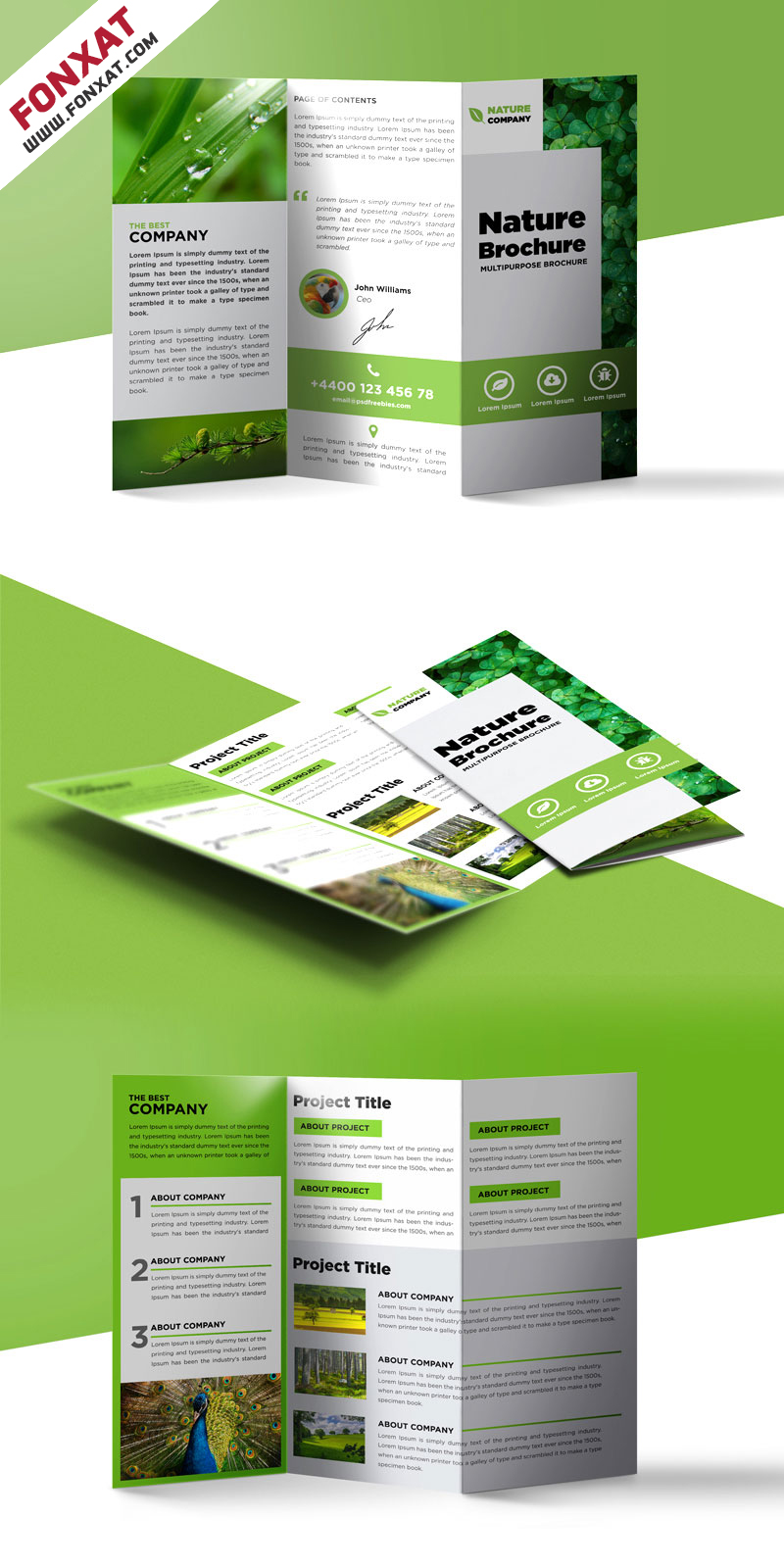 Nature-Tri-Fold-Brochure-Template-Free-PSD