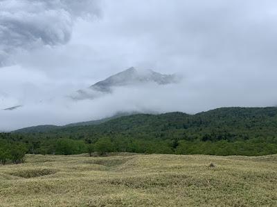 知床の山々は雲の中