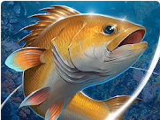 Fishing Hook Apk v2.1.8 Mod Money Free for android