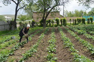 kyrgyzstan farming water management, kyrgyzstan women farmers, kyrgyzstan small group art craft tours