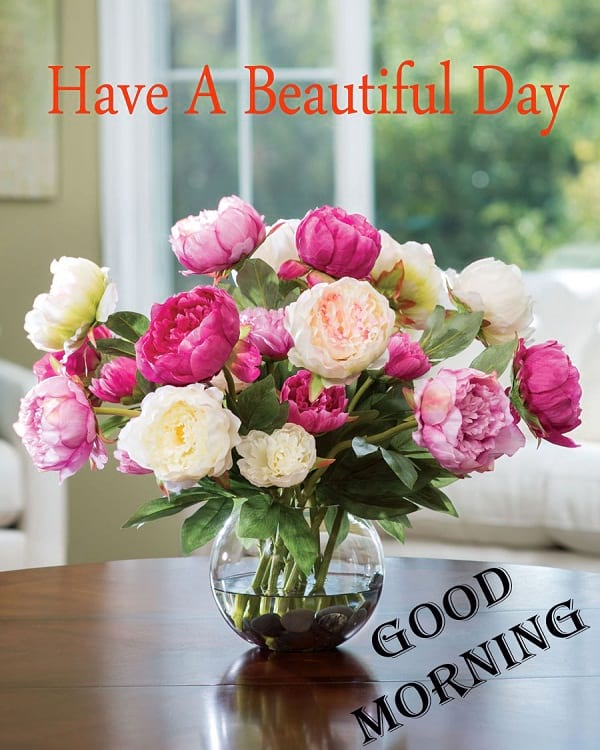 Good Morning Greetings with Peony Flowers
