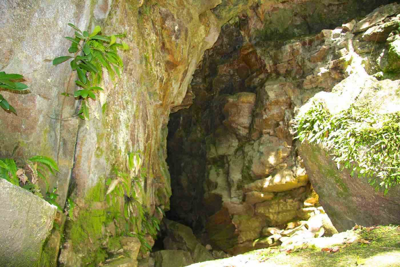 abbey caves - where to go caving in new zealand