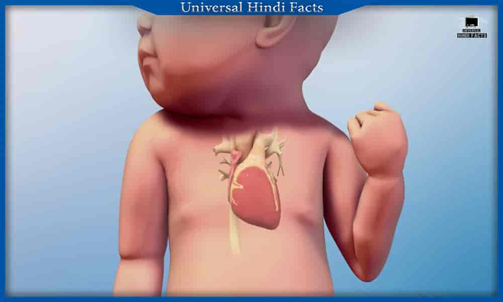 101 amazing facts about human body in hindi,  facts about human body in hindi, Human body facts, amazing facts about human body in hindi, interesting facts about human body in hindi, amazing facts about human brain in hindi, amazing facts about human eye in hindi, amazing facts about human heart in hindi,