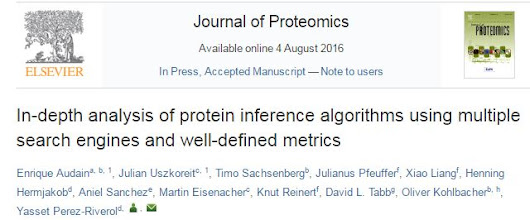 In-depth study of protein inference!