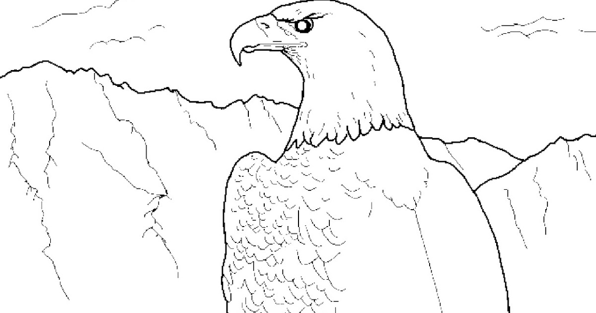 Forest Wildlife Art: Bald Eagle Coloring Book Page