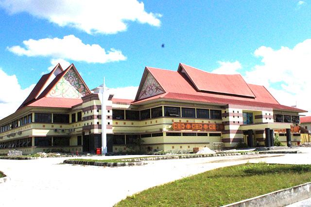 rumah sakit negeri swasta di palangkaraya