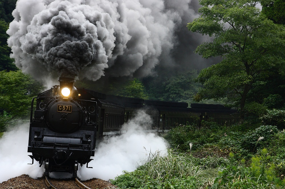 30 Day Challenge ZC | 5BD | EGG FAST Train