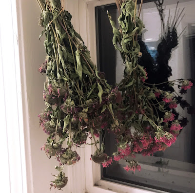 Drying Flowers for Herbal Tea