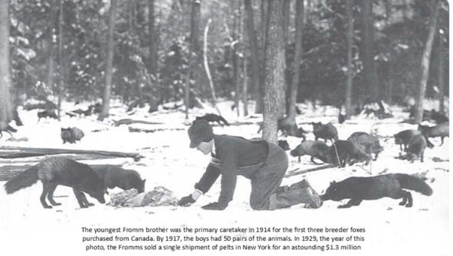 Here Are Historic P O Of The Fromm Fur Farm