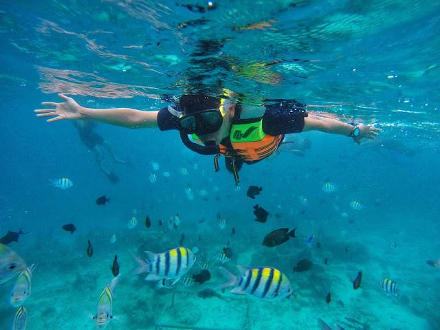 Kegiatan snorkling di Sabang