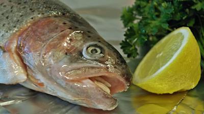 Можно ли заразиться коронавирусом через рыбу?