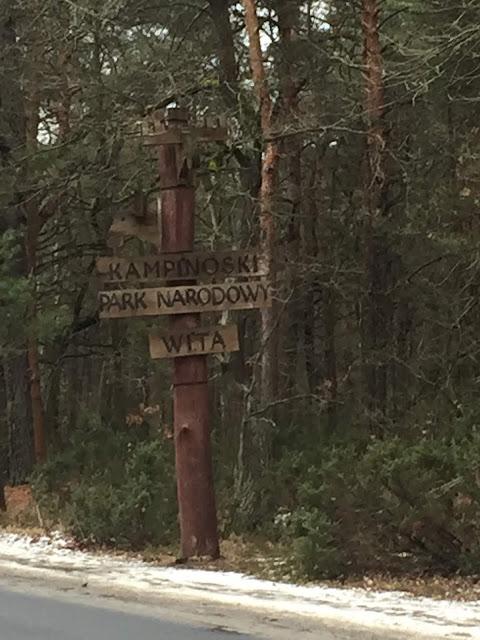 Gdzie straszy w Kampinosie? Duchna droga/A haunted place in Kampinos Forest - Ghosts Road