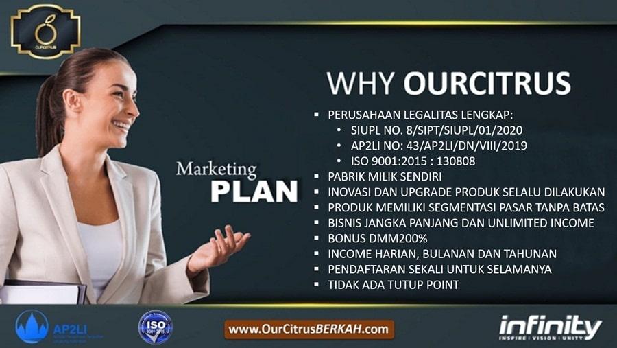 2.Marketing Plan Ourcitrus