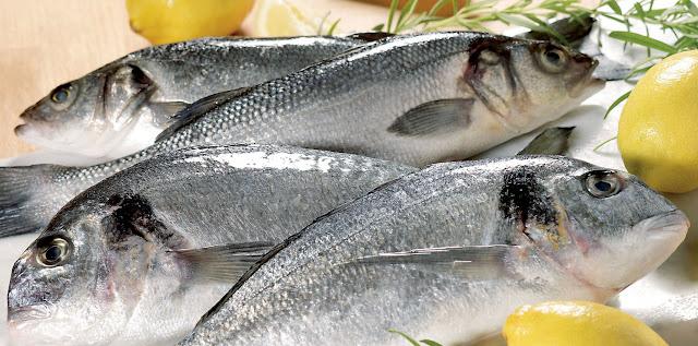 comment choisir le poisson