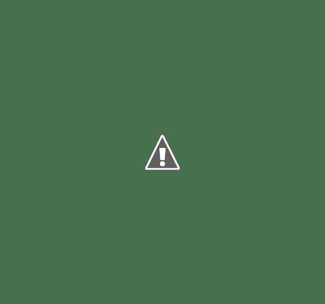 Skullcandy Jib Plus Wireless in-Earphone