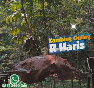 Gubukan Kambing Guling Ciwidey Bandung, kambing guling ciwidey bandung, kambing guling ciwidey, kambing guling,