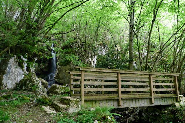 Puente sobre La Riega Cuesta Llano - Parque Natural de Ponga