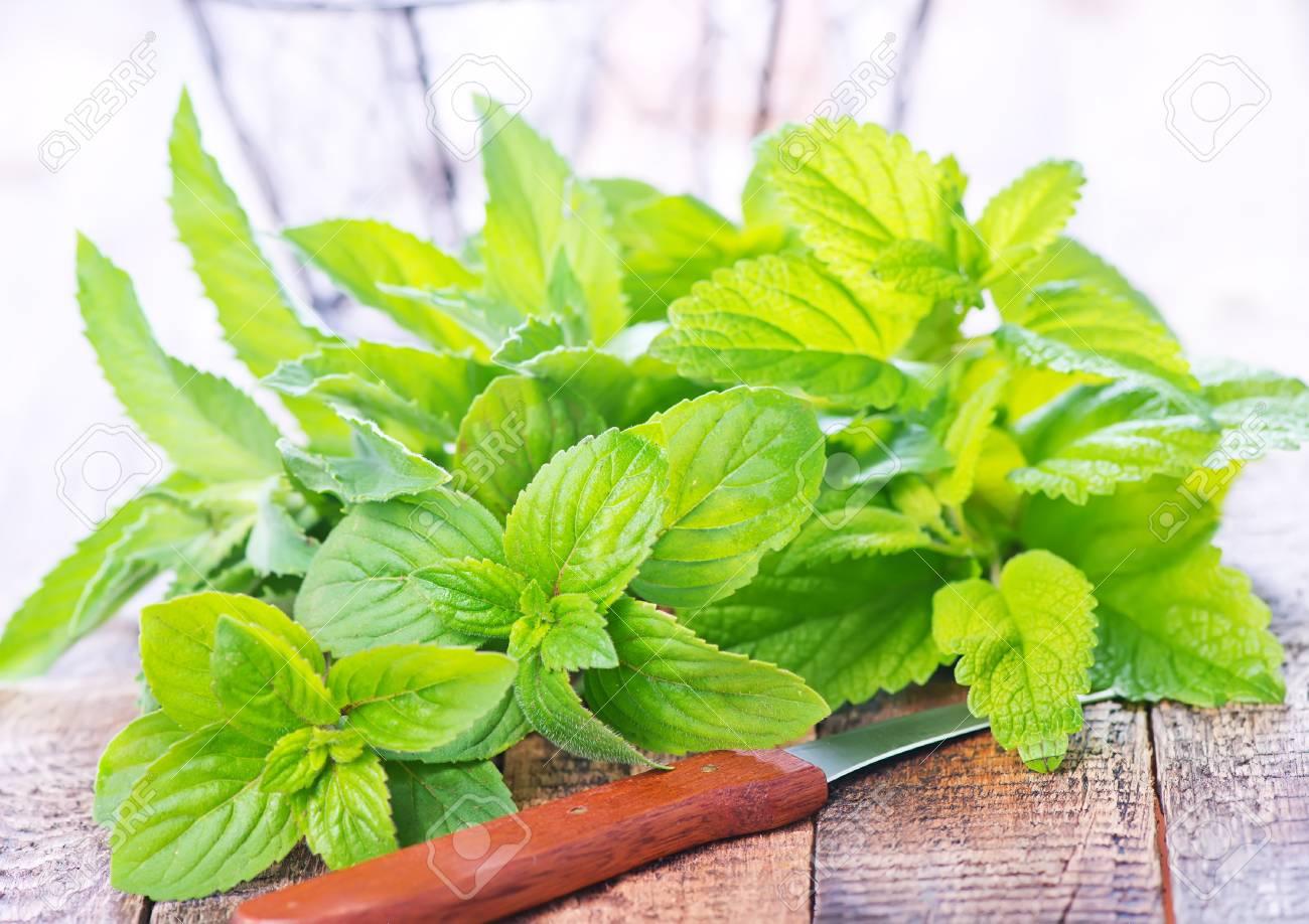 Plantas medicinales para gases en el estomago