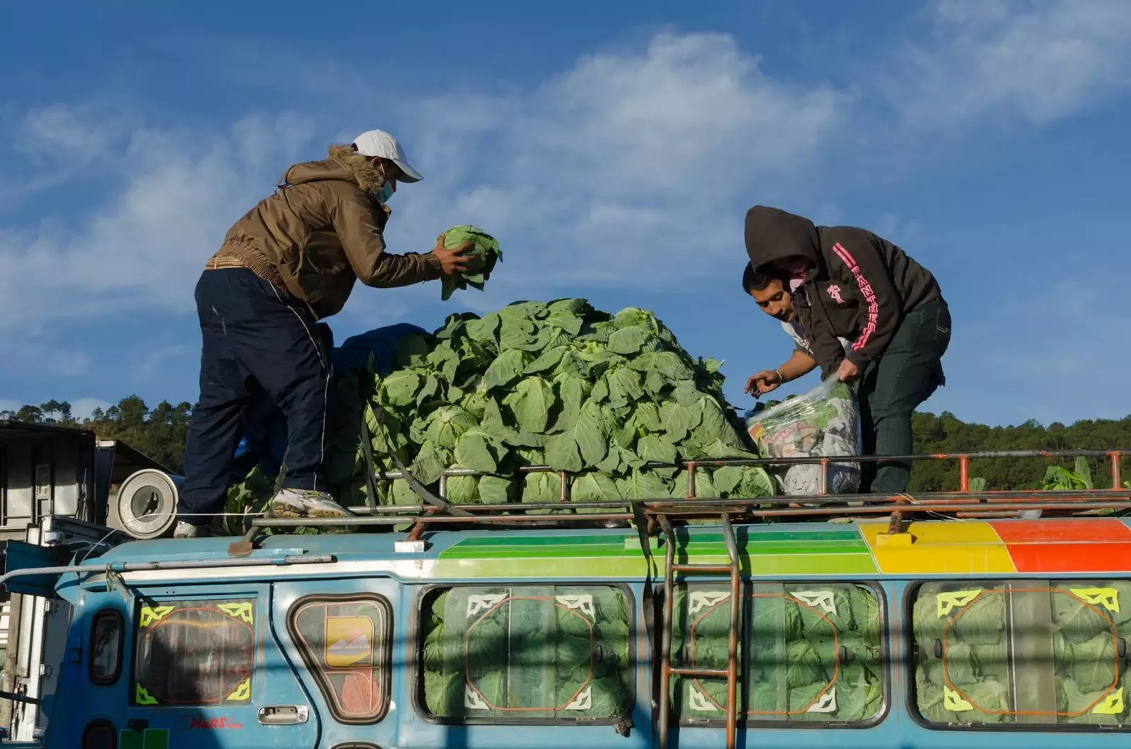 Vegetable Haulers Trading Post La Trinidad Benguet Cordillera Administrative Region Philippines