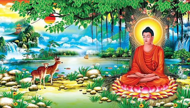 TÌM HIỂU KINH PHẬT - TƯƠNG ƯNG BỘ - Chương 2 - Tương Ưng Kosala - Phẩm Thứ Nhất (1)