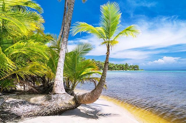 Bocas del Toro, con sus bosques de palmeras verdes, muchos kilómetros de costa de arena blanca, arrecifes extendidos y aguas transparentes, es una de las zonas turísticas más famosas de Panamá.