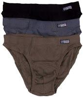 Celana dalam pria sebagai contoh jenis busana dalam