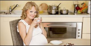 Kenali Berbagai Hormon Yang Berperan Di Saat Hamil, Jual Buku Tips Cepat Hamil