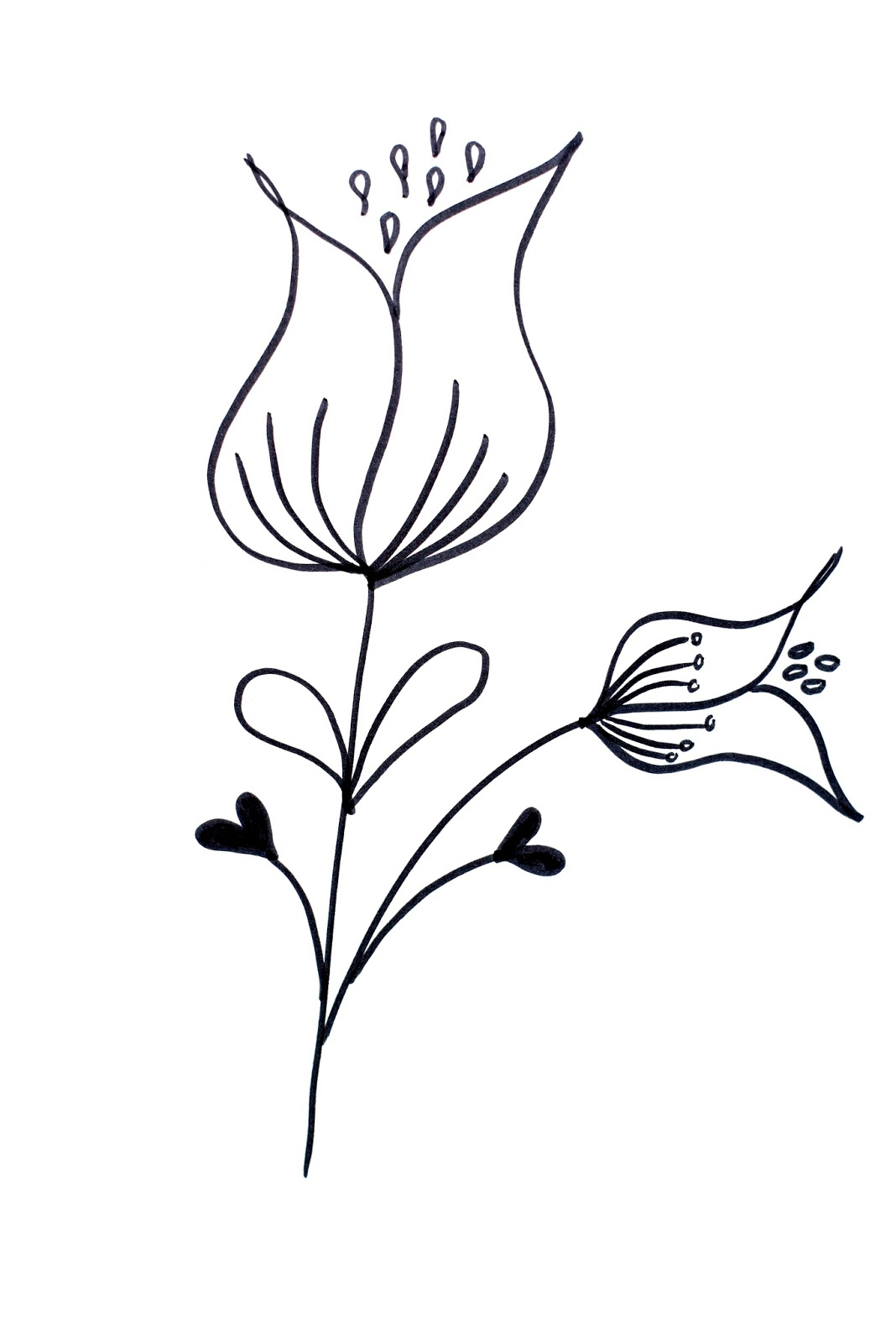 Lettering line drawing motivation how to draw flowers 39 for How to draw a basic flower
