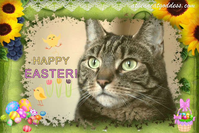 Caturday Art: Happy Easter