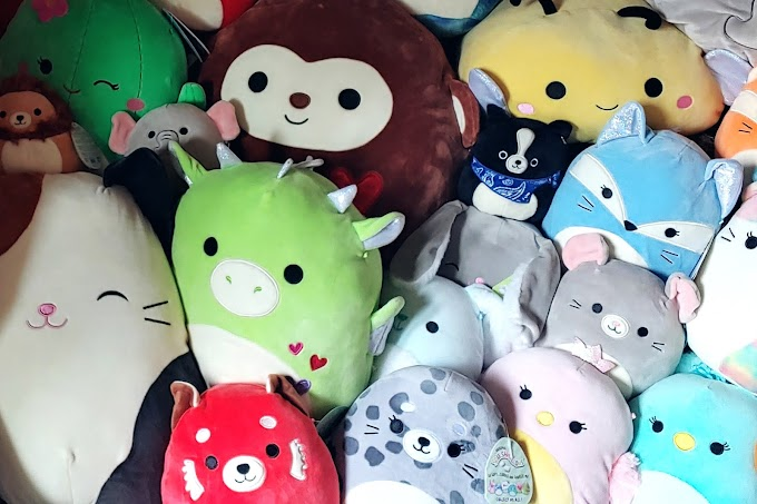 The rise of Squishmallows and scalping