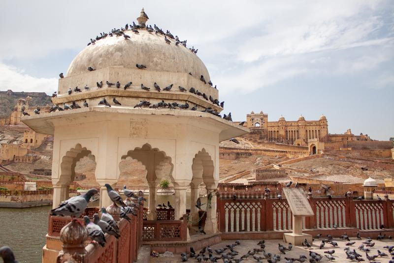 Amer Fort or Amber Fort, Jaipur, Rajasthan.