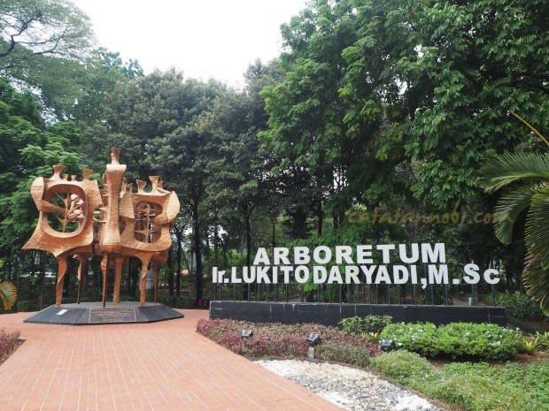 Tips Liburan Murah Ke Hutan Kota Dekat Gedung DPR Jakarta